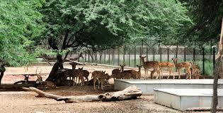 National-Zoological-Park